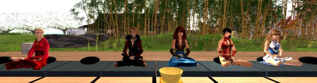Aero meditating at Zen retreat