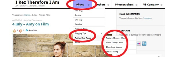 "Screen Cap of this blog showing menu item to access ""Author Help Pages"""