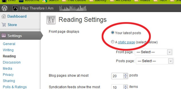 "Screen Cap of WordPress edit panel showing choice of ""Static"" or ""Post"" home page."