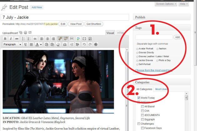 Screen Cap of iRez blog in WordPress Post Editor showing Category & Tag choices