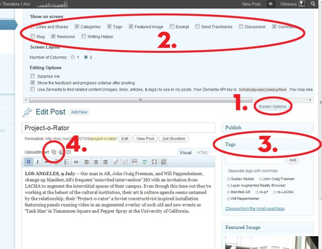 "Screen Cap of iRez Blog Edit window showing how to use ""Screen Options"" to show or hide pallets"