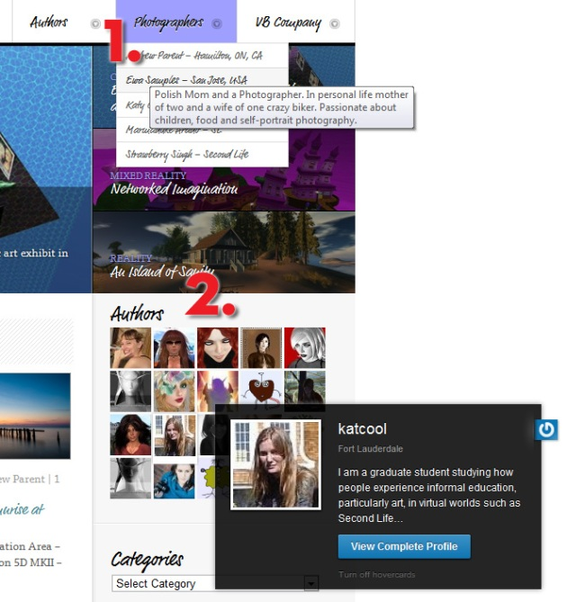 Screen Cap of iRez blog showing Author & Photographer menus and Author image grid in the sidebar