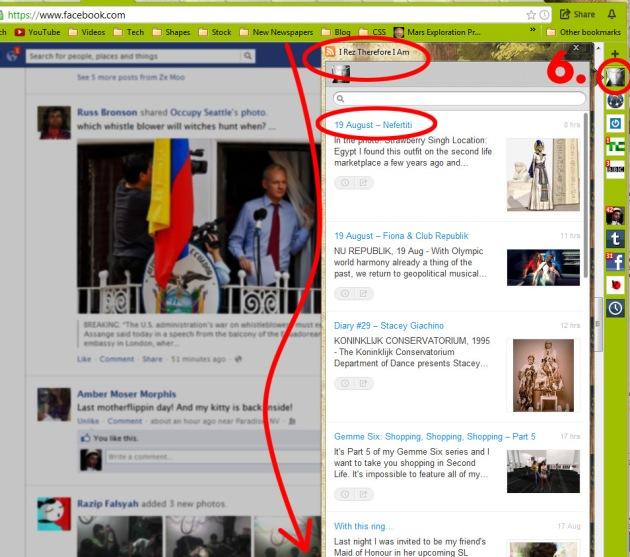 ScreenCap of RockMelt App Edge showing iRez Virtual Salon reader and last 20 posts