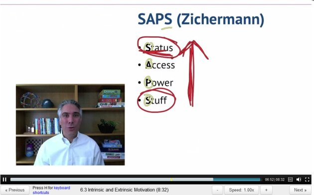 "Gabe Zichermann's ""SAPS"" diagram"